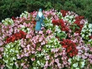 Gnome Garden 1024 px
